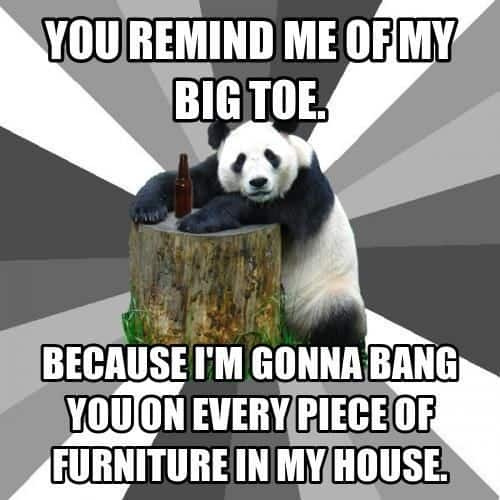 You Remind Me Of My Big Toe Panda Meme For Her