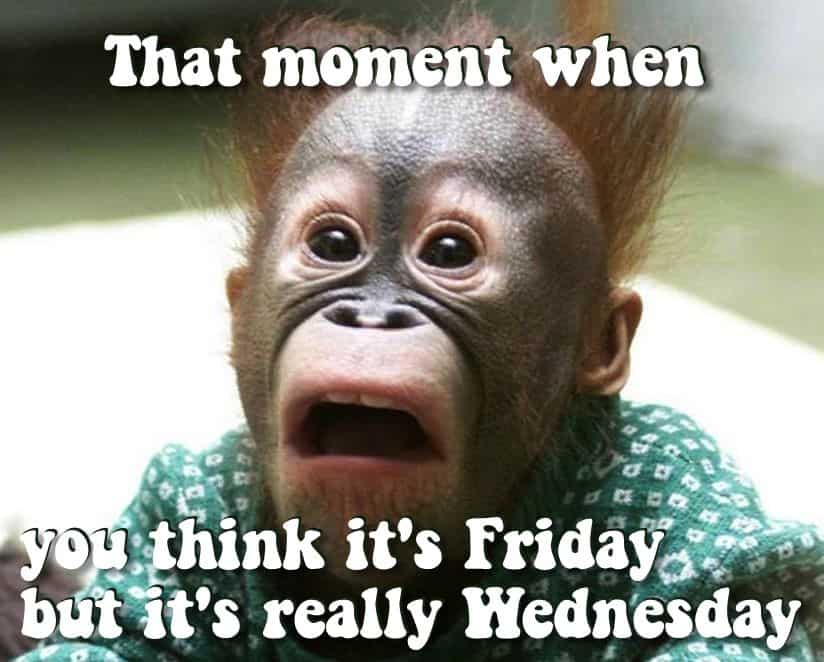 That Moment When You Think It's Friday But It's Really Wednesday