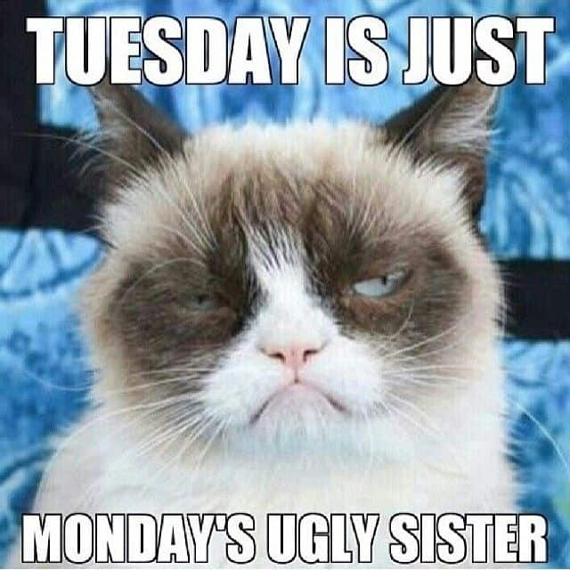 Tuesday Is Just Monday's Ugly Sister Hilarious Meme