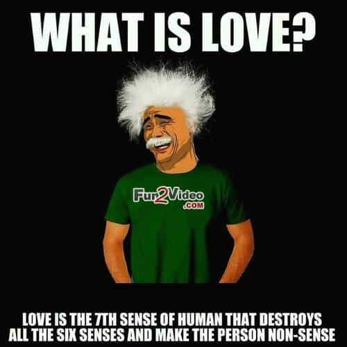 What Is Love Hilarious Meme About Love