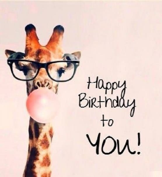 Hilarious Birthday Messages In Images
