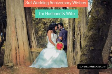 3rd Wedding Anniversary Wishes For Husband And Wife